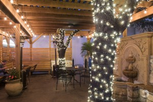 A photo of Las Palomas Restaurant's patio in West Woods Shopping Center Austin, TX