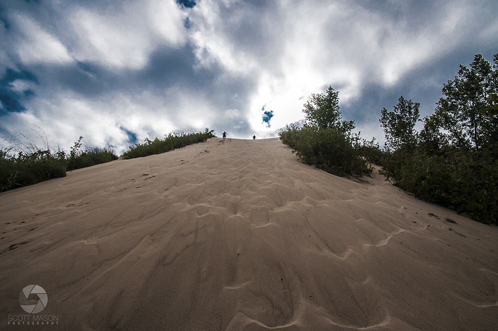 a photo of Tower Hill Dune at Warren Dunes State Park