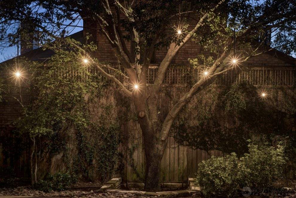 a photo showing a tree with hanging lights in it and a fence behind it at twilight