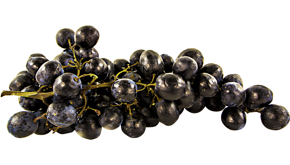 a photo of purple grapes cut out over a white background