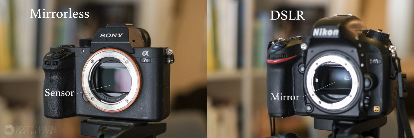 a side-by-side photo showing the sensors in a mirrorless and a dslr camera