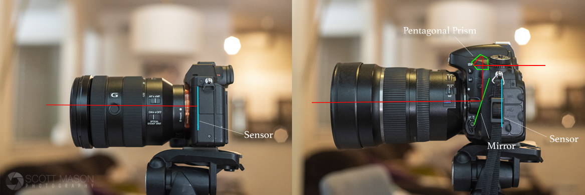 a side-by-side diagram of mirrorless and DSLR cameras, showing the anatomy of how light travels